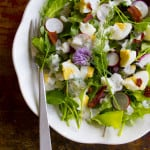 Spring Salad with Bacon Egg Radishes and Yogurt Dill Dressing