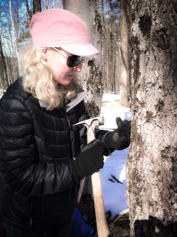 maple-sugaring-march-2013-1