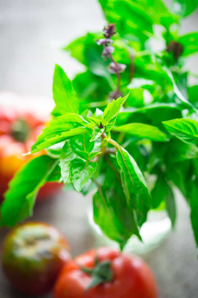 tomatoes-with-thai-basil-dressing-003