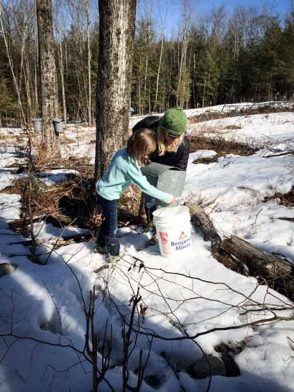 Maple Sugaring in Vermont 2014