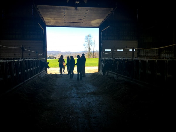 Kayhart Dairy Farm, West Addison VT. The Cabot Fit Team 2016