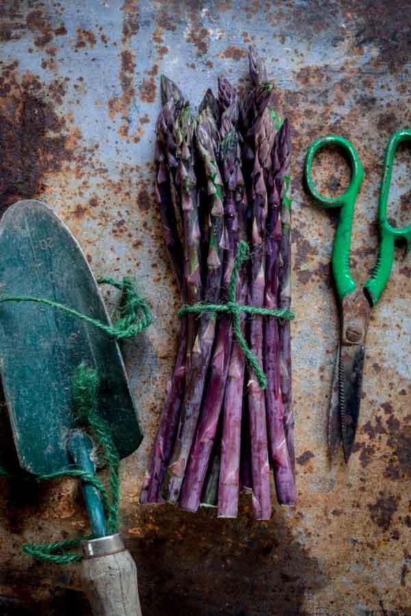 asparagus-stilllife-005