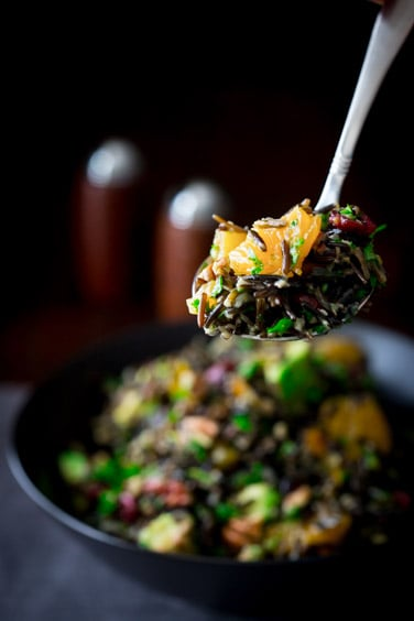 wild rice salad with cranberries, apricots and avocado