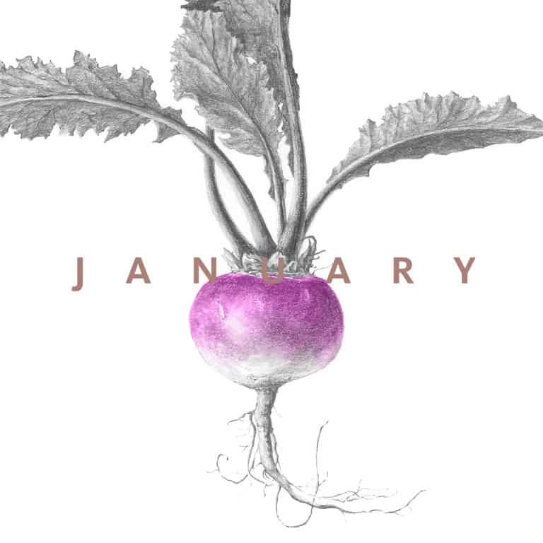 eat seasonal January 2017