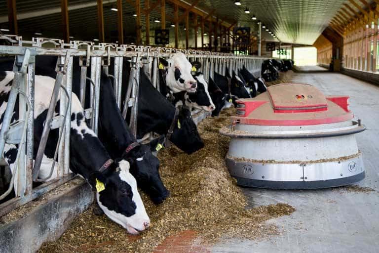 Freund's Dairy Farm