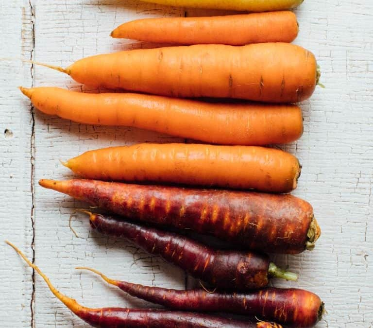 Produce Spotlight: The Ultimate Guide to Carrots