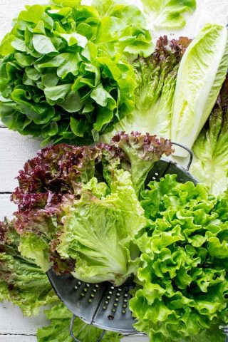 Produce Spotlight on Healthy Seasonal Recipes: The Ultimate Guide to Lettuce. Tips for home gardeners on how to grow, harvest and wash lettuce. How to cut lettuce. What are the different kinds of lettuce. And nutrtion tips. #lettuce #lowcarb #keto #lowcalorie #healthy