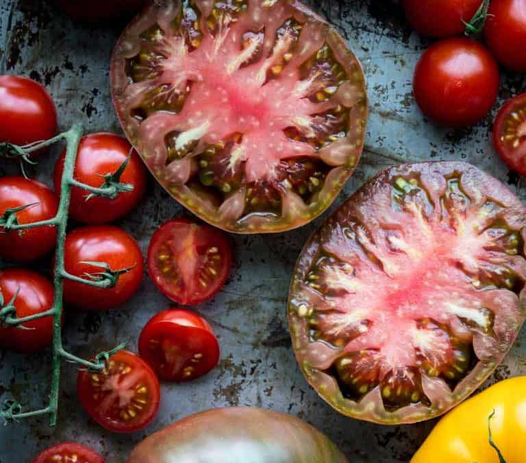 Produce Spotlight: The Ultimate Guide to Tomatoes