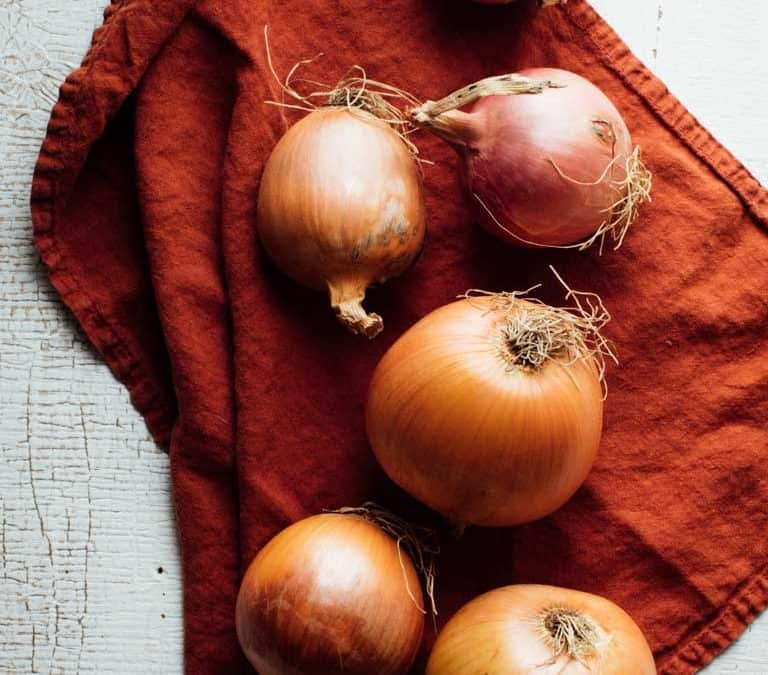 Produce Spotlight: The Ultimate Guide To Onions