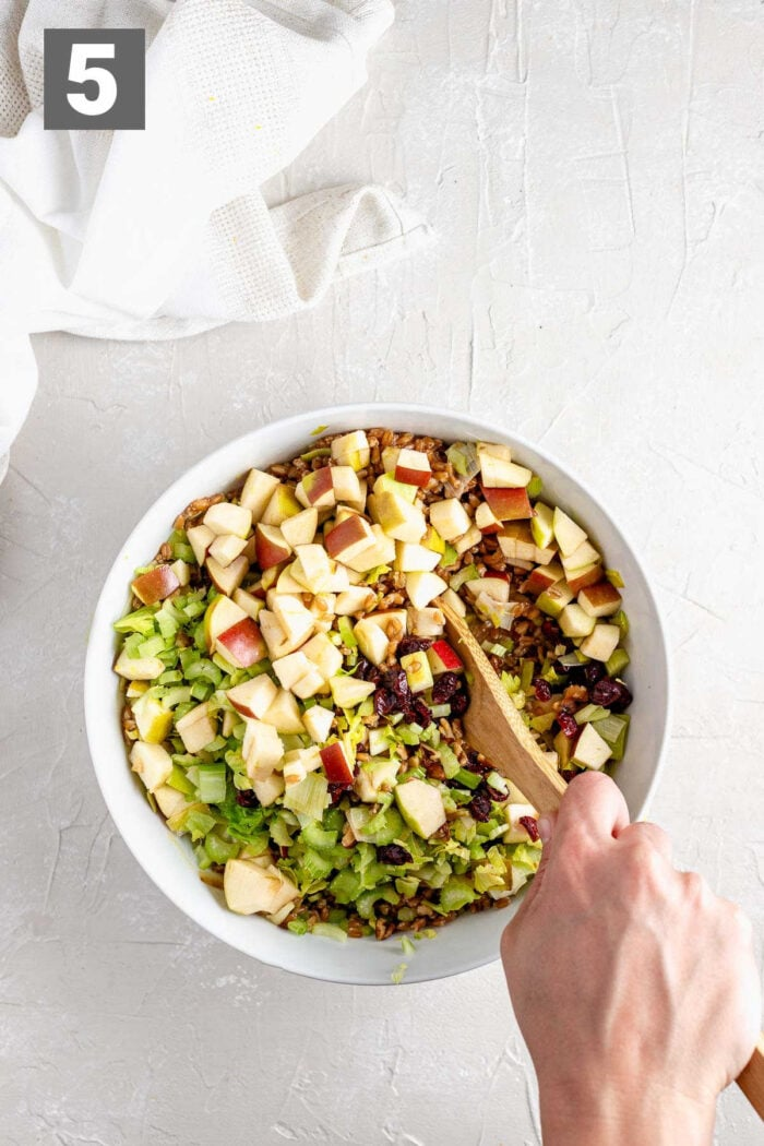 add the apples, walnuts, celery and remaining ingredients and stir to combine