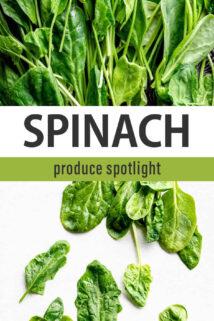 spinach spotlight text overlay