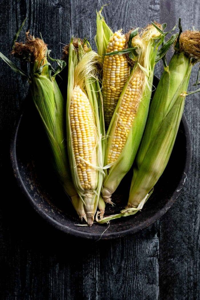 Grilled Corn on dark background