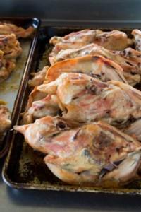 chicken_stock_003_small