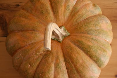 In Season– Pumpkins! Brown Rice Pumpkin Risotto