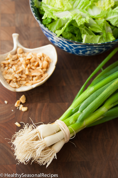 napa cabbage, scallions and chopped cashews for turkey pad thai