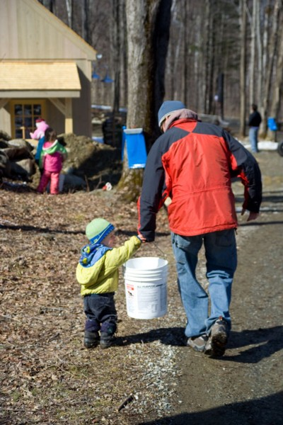 backyard sugaring, our neighbors help out